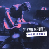 Shawn Mendes - MTV Unplugged  artwork