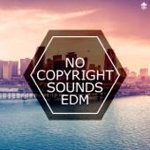 No Copyright Sounds EDM
