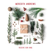 Receive Our King - Meredith Andrews