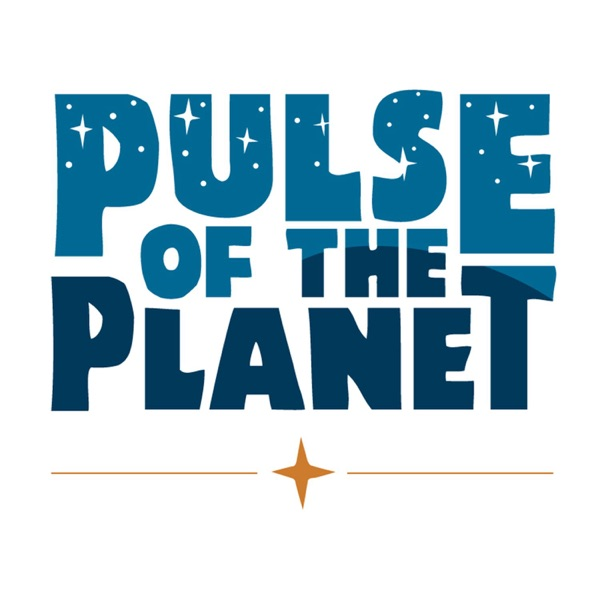 Pulse of the Planet Podcast with Jim Metzner   Science   Nature   Environment   Technology