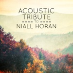 Acoustic Tribute to Niall Horan (Instrumental)