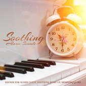 Soothing Sound - Sri Siddhi