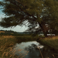 S. Carey - More I See artwork