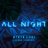 Steve Aoki & Lauren Jauregui - All Night  artwork