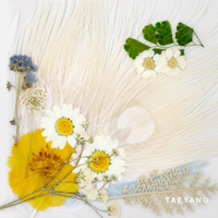 SOL (from BIGBANG) - WHITE NIGHT -KR EDITION- artwork