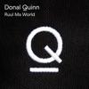 Donal Quinn