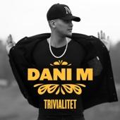 Dani M - Trivialitet bild