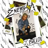bajar descargar mp3 Safari (feat. Pharrell Williams, BIA & Sky) - J Balvin