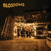 Blossoms - Live in Concert