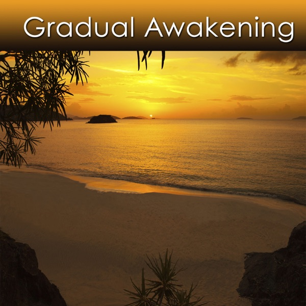 Relaxation Music for Stress  (mp3)