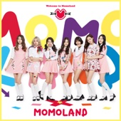 Welcome to MOMOLAND - EP