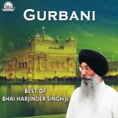 Gurbani - Best of Bhai Harjinder Singh Ji