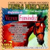 Pistas Musicales - Preferidas de Vicente Fernandez (Karaoke)
