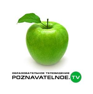 Аудиолекции от PoznavatelnoeTV. Александр Дугин
