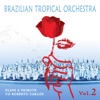 Brazilian Tropical Orchestra Plays a Tribute To Roberto Carlos, Vol. 2, Brazilian Tropical Orchestra