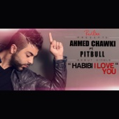 Habibi I Love You (feat. Pitbull) [Radio Edit]