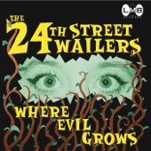 The 24th Street Wailers - Live in Concert