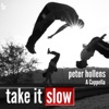 Take It Slow (Acappella) - Single, Peter Hollens