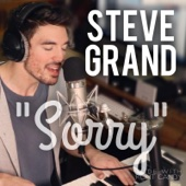 Steve Grand - Sorry artwork