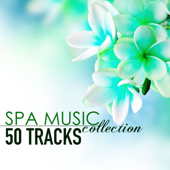 Spa Music Collection - 50 Tracks of Soothing Sounds of Nature for Wellness Centers and Hotel Lounge