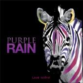 Purple Rain (Instrumental)