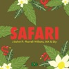 Safari (feat. Pharrell Williams, BIA & Sky) - Single, J Balvin