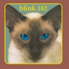 Cheshire Cat, blink-182