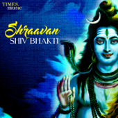 [Download] Shiv Tandav Stotram MP3