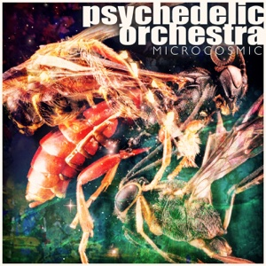 Microcosmic – EP – Psychedelic Orchestra