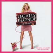 Legally Blonde: The Musical (Original Broadway Cast Recording) - Various Artists Cover Art