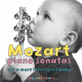 Mozart Piano Sonatas - For a More Intelligent Baby