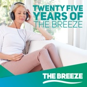 25 Years of the Breeze - Various Artists