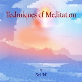 Techniques of Meditation (Discourse)