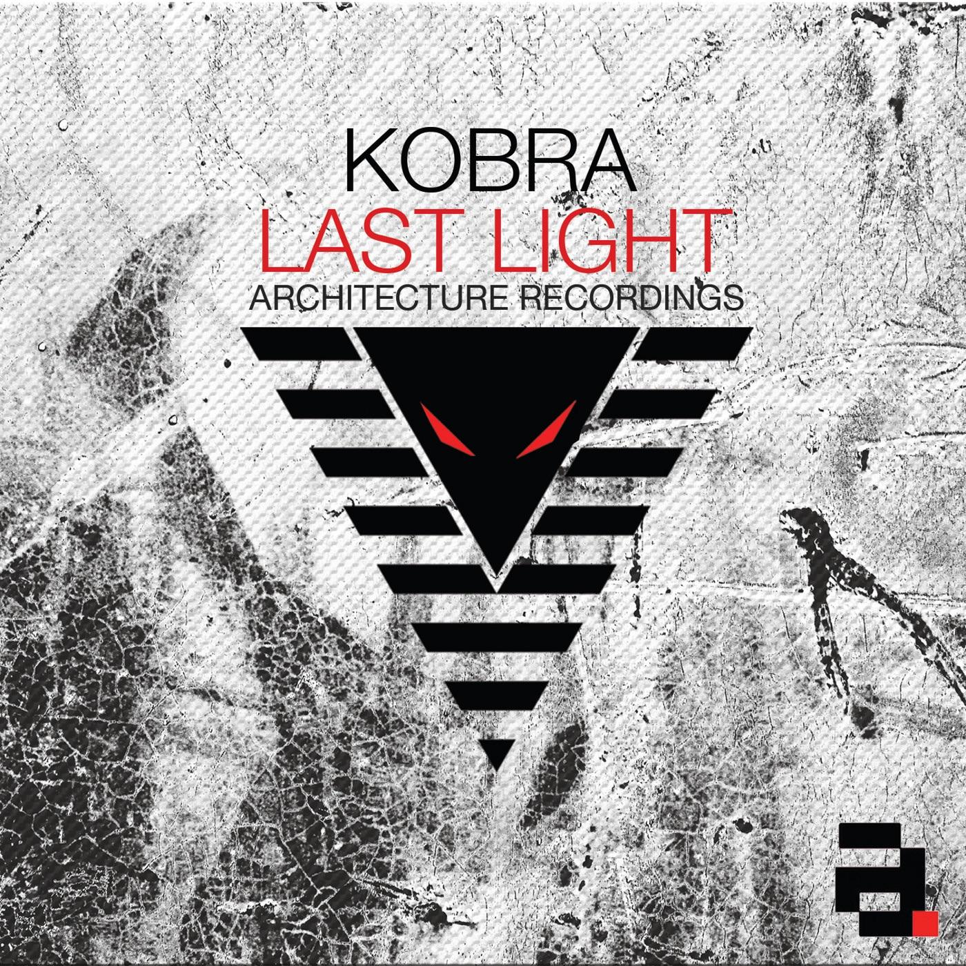 Приват записи kobra 1 фотография