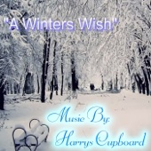 A Winters Wish