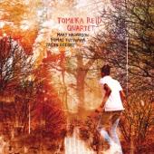 Tomeka Reid - Tomeka Reid Quartet  artwork