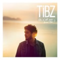 TiBZ Nation (The Story Tellers remix)
