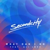 Secondcity ft. Ali Love - What Can I Do