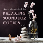 New Winter Health & Spa - Relaxing Sound for Hotels 2015