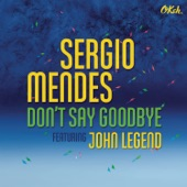 Don't Say Goodbye (feat. John Legend) - Single