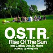 Rise of the Sun (feat. Dj Haem & Cadillac Dale)