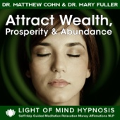 Attract Wealth, Prosperity & Abundance Light of Mind Hypnosis Self Help Guided Meditation Relaxation Money Affirmations NLP
