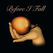 Before I Fall (feat. Sami Freeman)