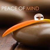 Liquid Blue - Peace of Mind: Massage Music, Liquid Relaxing Piano Songs, Spa Music, Inner Peace, Serenity and Calmness kunstwerk