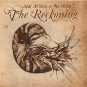 The Reckoning - Asaf Avidan & The Mojos