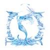 Pochette album Nolwenn Leroy - Ô tour de l'eau (Live)