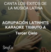 Instrumental Karaoke Series: Tercer Cielo (Karaoke Version)