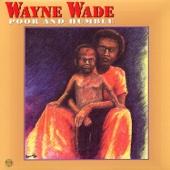 Down in Iran - Wayne Wade