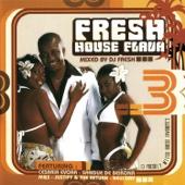 Fresh House Flava, Vol. 3 - Various Artists