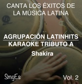 Instrumental Karaoke Series: Shakira, Vol. 2 (Karaoke Version)